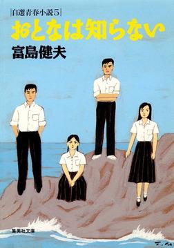 おとなは知らない自選青春小説5-電子書籍