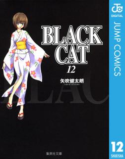 BLACK CAT 12-電子書籍