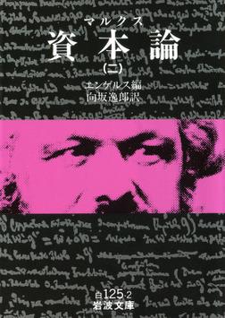 マルクス 資本論 2-電子書籍