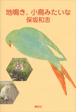 地鳴き、小鳥みたいな-電子書籍
