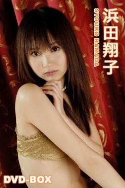 浜田翔子 「浜田翔子DVD-BOX」-電子書籍