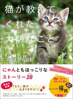 猫が教えてくれた大切なこと-電子書籍