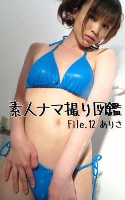 素人ナマ撮り図鑑 File.12 ありさ-電子書籍