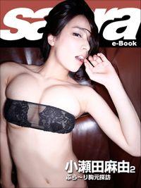 ぶら~り胸元探訪 小瀬田麻由2 [sabra net e-Book]