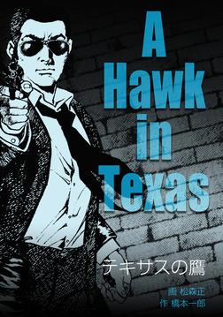テキサスの鷹-電子書籍