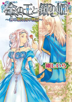 金の王と銀の姫 -神の眠る国の物語7--電子書籍