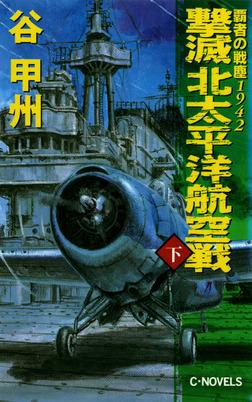 覇者の戦塵1942 撃滅 北太平洋航空戦 下-電子書籍