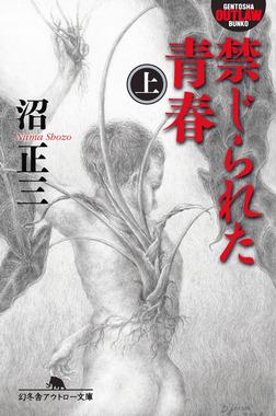 禁じられた青春(上)-電子書籍