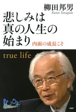 悲しみは真の人生の始まり-電子書籍