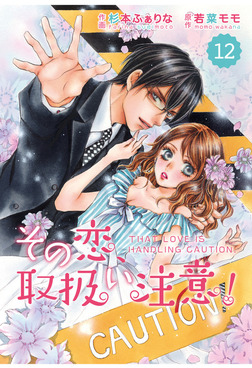 comic Berry's その恋、取扱い注意!12巻-電子書籍