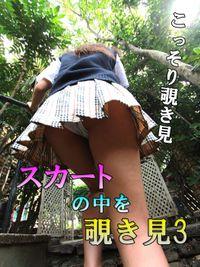 スカートの中を覗き見3