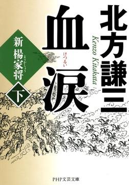 血涙(下) 新楊家将(ようかしょう)-電子書籍