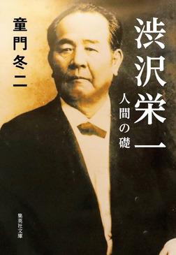 渋沢栄一 人間の礎-電子書籍