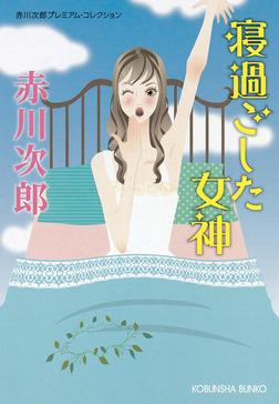 寝過ごした女神~赤川次郎プレミアム・コレクション~-電子書籍