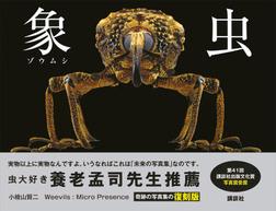 象虫 Weevils:Micro Presence 復刻版-電子書籍