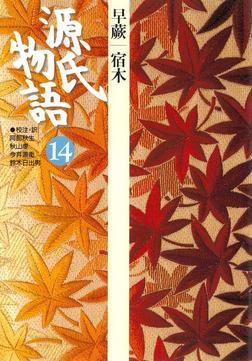 源氏物語 14 古典セレクション-電子書籍
