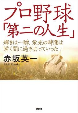 プロ野球「第二の人生」 輝きは一瞬、栄光の時間は瞬く間に過ぎ去っていった-電子書籍
