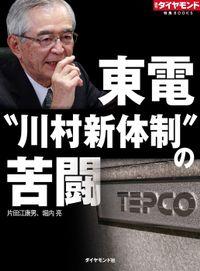 """東電""""川村新体制""""の苦闘"""