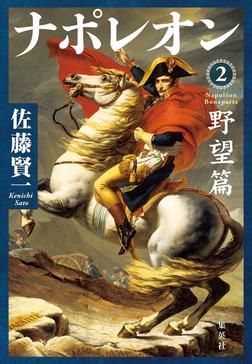 ナポレオン 2 野望篇-電子書籍