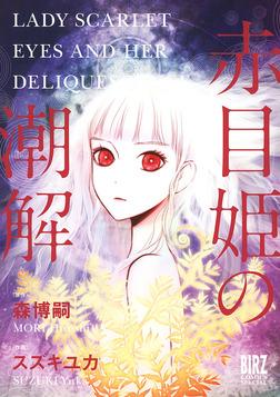 赤目姫の潮解-電子書籍