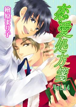 恋愛処方箋 Vol.14-電子書籍