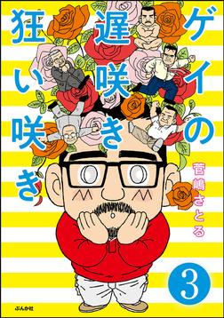 ゲイの遅咲き狂い咲き(分冊版) 【第3話】-電子書籍