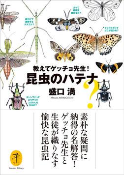 ヤマケイ文庫 教えてゲッチョ先生!昆虫のハテナ-電子書籍