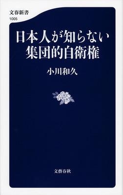 日本人が知らない集団的自衛権-電子書籍