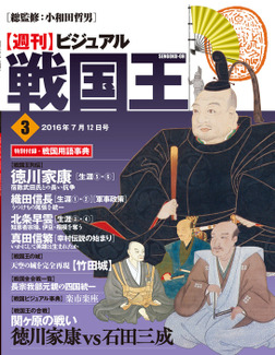 ビジュアル戦国王3号-電子書籍