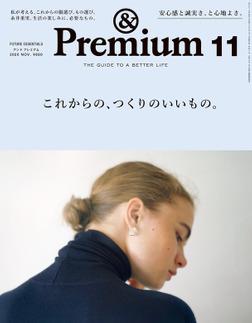 &Premium(アンド プレミアム) 2020年11月号 [これからの、つくりのいいもの。]-電子書籍