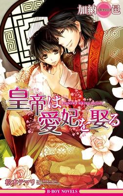 皇帝は愛妃を娶る【イラスト入り】-電子書籍