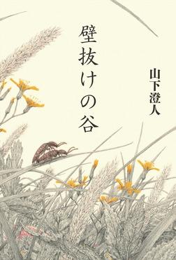 壁抜けの谷-電子書籍