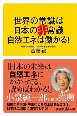 世界の常識は日本の非常識 自然エネは儲かる!-電子書籍