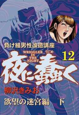 夜に蠢く(12) 欲望の迷宮編 下-電子書籍