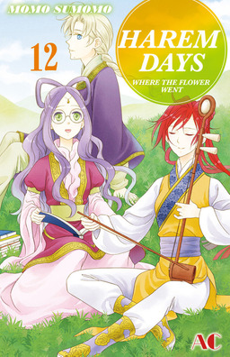 HAREM DAYS THE SEVEN-STARRED COUNTRY, Volume 12
