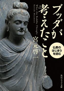 ブッダが考えたこと 仏教のはじまりを読む-電子書籍