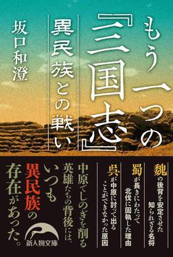 もう一つの『三国志』 異民族との戦い-電子書籍