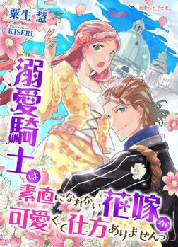 溺愛騎士は素直になれない花嫁が可愛くて仕方ありませんっ-電子書籍