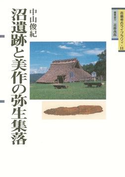 沼遺跡と美作の弥生集落-電子書籍