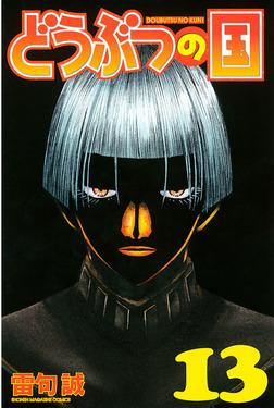 どうぶつの国(13)-電子書籍