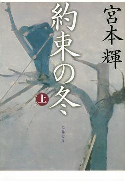 約束の冬(上)-電子書籍
