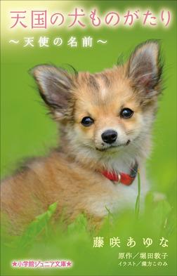 小学館ジュニア文庫 天国の犬ものがたり~天使の名前~-電子書籍