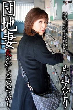 人妻・熟女通信DX 「団地妻 夫の知らない昼下がり」 片山みどり-電子書籍