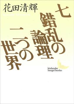 七・錯乱の論理・二つの世界-電子書籍