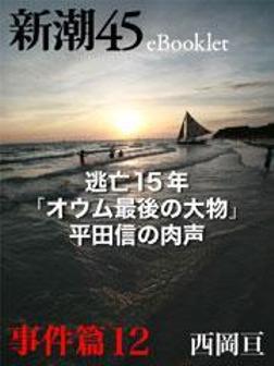 逃亡15年「オウム最後の大物」平田信の肉声―新潮45 eBooklet 事件編12-電子書籍