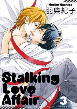 Stalking Love Affair 3-電子書籍