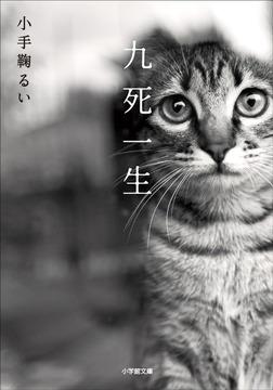 九死一生-電子書籍