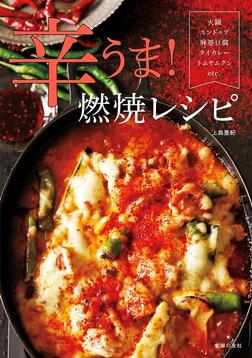 辛うま!燃焼レシピ-電子書籍