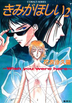 きみがほしい2~Wish you were here~-電子書籍