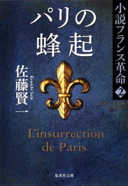 パリの蜂起 小説フランス革命 2-電子書籍